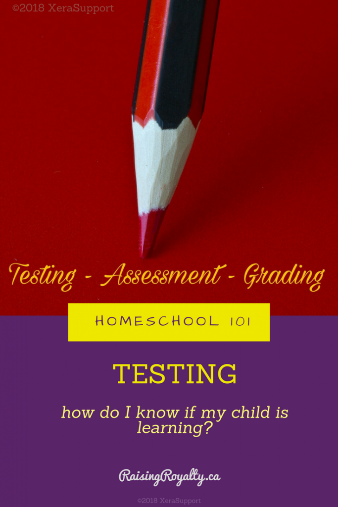 A red pencil for testing in homeschool