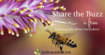 Free lesson plan on bees by Life Led Homeschool