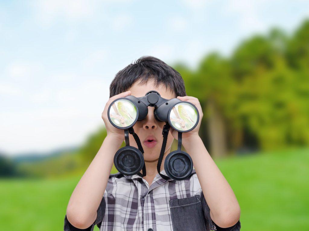 Binoculars help a lot when backyard birdwatching!