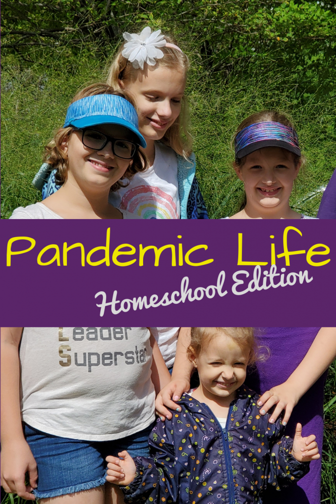 How does a long-term homeschooler survive a pandemic? Here's my musings on how we did, and what we learned during Covid-19 lockdown.